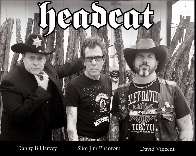 headcat_david_vincent